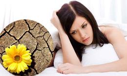 Y học cổ truyền ứng phó với tình trạng khô âm đạo