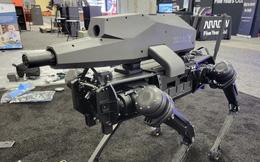Chó robot đã được trang bị súng trường: zoom quang 30x, camera nhiệt, có thể bắn trúng mục tiêu cách 1.200m