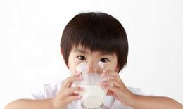 Cảnh báo nguy cơ thiếu máu thiếu sắt do uống quá nhiều sữa tươi