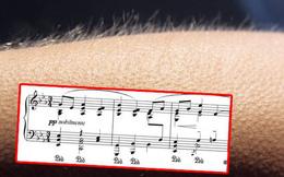 """Các nhà nghiên cứu tổng hợp danh sách hơn 700 bài hát có thể khiến người nghe 'nổi da gà"""""""