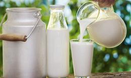 Người bệnh viêm xoang có nên dùng sữa và các chế phẩm từ sữa?