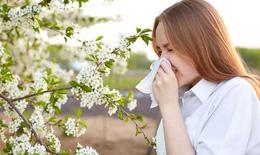 Cách phòng ngừa viêm xoang hiệu quả đối với người lớn và trẻ nhỏ khi giao mùa