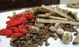 10 bài thuốc Đông y trị viêm xoang hiệu quả